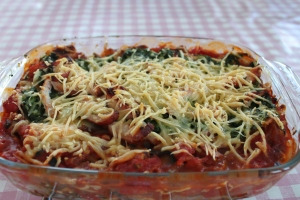 Lasagne-light-huttenkase