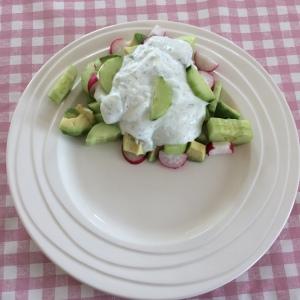 Radijs-komkommer-salade